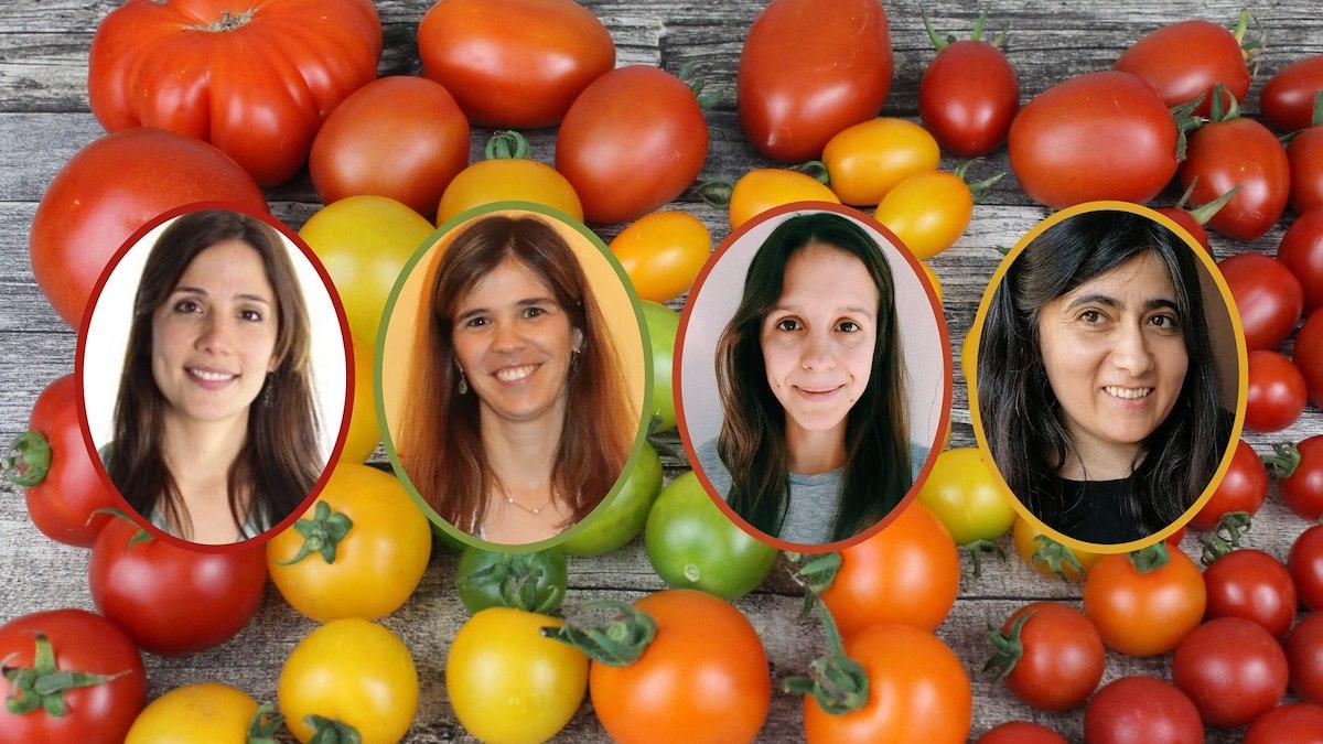 Lisa Afonso, Sara Aboim, Patrícia Pessoa, Xana Sá-Pinto