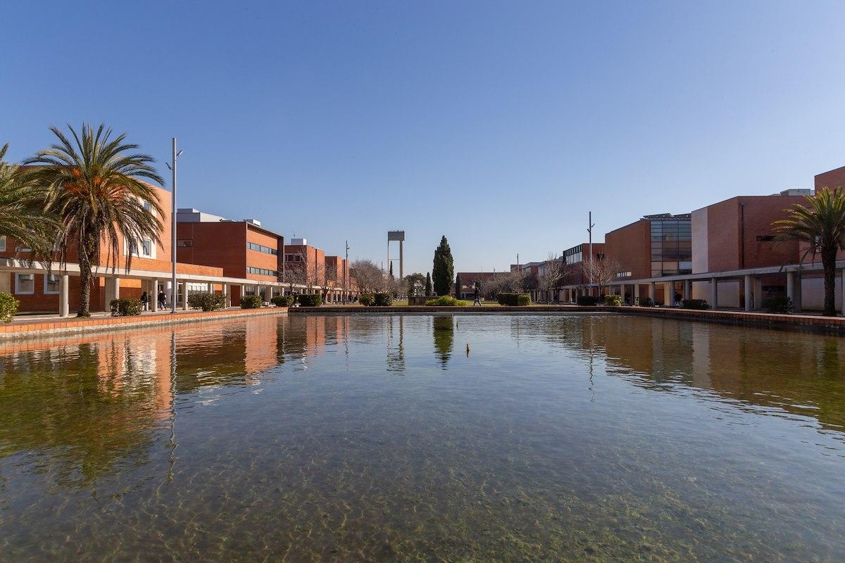 Lago na alameda central do campus de Santiago, Universidade de Aveiro